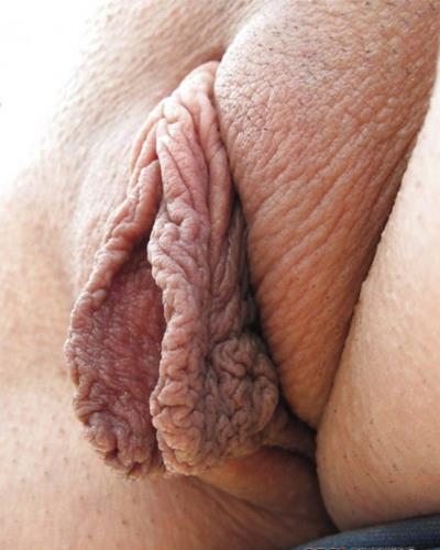 порно фото мясистые пизды